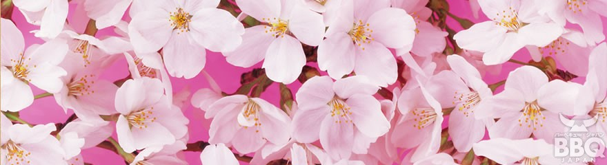 お花見バーベキュー