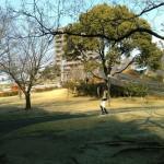 大池公園・大窪公園