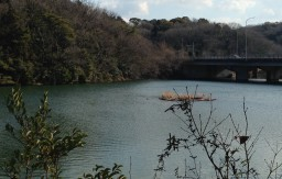 大谷公園 大谷池
