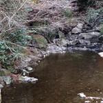 くらがり渓谷キャンプ場 マス釣り場