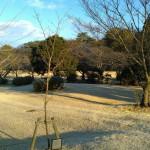 尾張旭森林公園 (4)