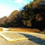尾張旭森林公園 (2)