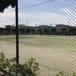 水源公園 野球場