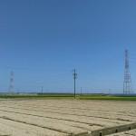 川口公園 風景