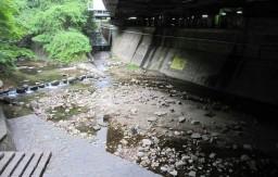 布引の滝下流 BBQスポット