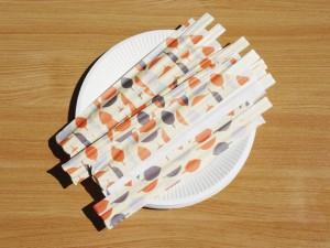 箸、紙皿セット