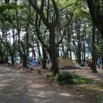 上大島キャンプ場 キャンプ場3