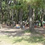 上大島キャンプ場 キャンプ場1