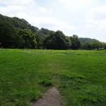 上大島キャンプ場 相模川自然公園広場