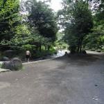 上大島キャンプ場 自然公園内清流