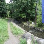 上大島キャンプ場 散策路の中に清流
