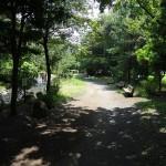 上大島キャンプ場 散策路