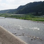 上大島キャンプ場 相模川の清流
