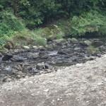 十里木ランド 秋川渓谷の清流