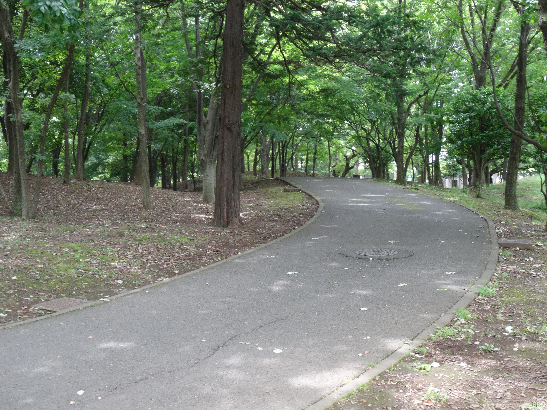 府中の森公園 周辺を沿うウォーキングロード