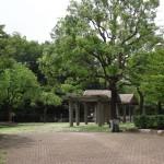 府中の森公園 いたるところに休憩場が