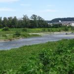 北野公園 公園東側に位置する浅川