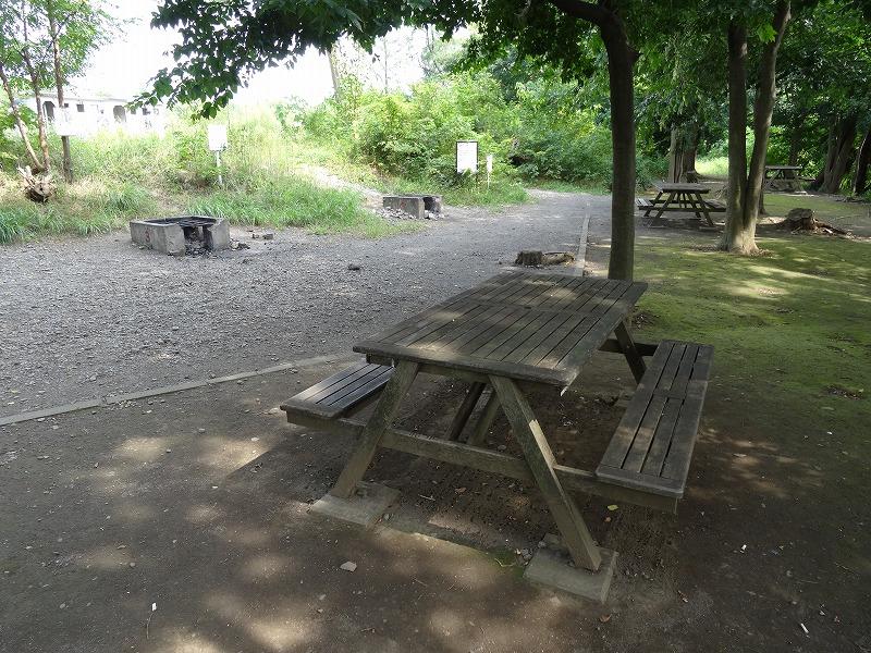 多摩川中央公園 (10)