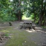 多摩川中央公園 BBQ施設 夏も涼しげ