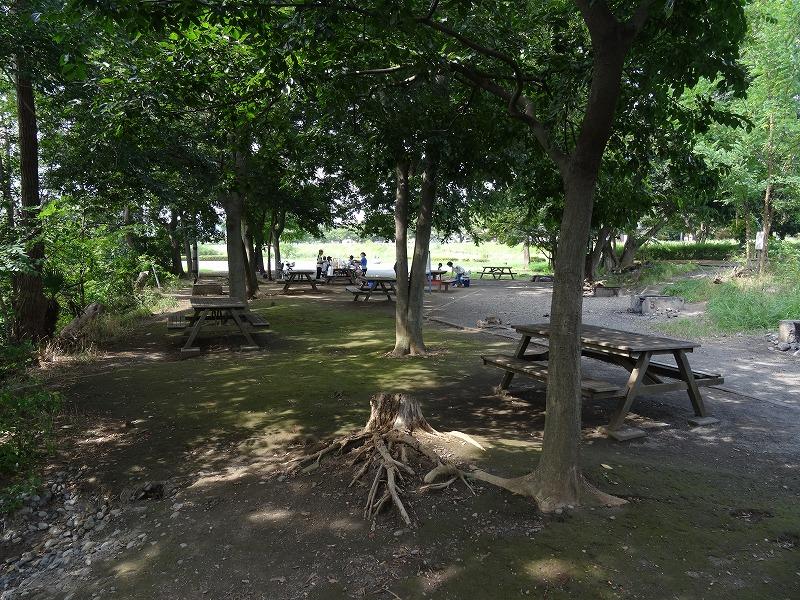 多摩川中央公園 BBQ場はかくれんぼ広場に