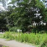 多摩川中央公園 BBQ施設