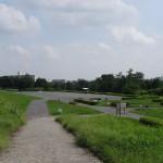 多摩川中央公園 堤防からの眺め