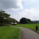 福生南公園 デイキャンプを楽しむ利用者も