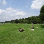 福生南公園 腹筋台などの健康遊具が沢山あります。