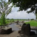 福生南公園 じゃぶじゃぶ池