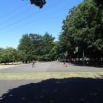 小金井公園 バスケット広場
