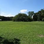 小金井公園 広場