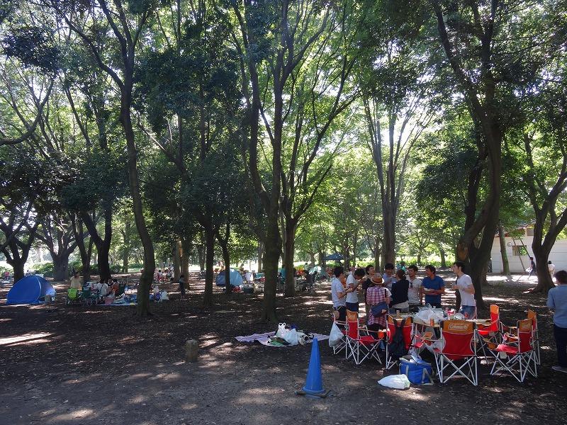 小金井公園 木陰の下で夏も涼しげ。