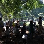 小金井公園 木漏れ日の中でミニコンサート