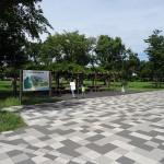 郷土の森 公園入口