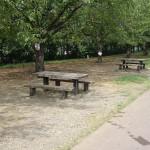 郷土の森公園 府中多摩川かぜのみちのベンチ
