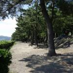 望地弁天キャンプ場 キャンプ場と相模川をはさむ歩道