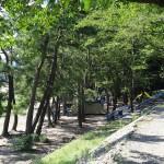 望地弁天キャンプ場 キャンプ場4