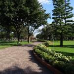 武蔵野中央公園遊歩道