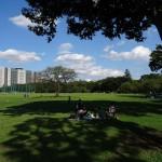 youtube動画 武蔵野中央公園(東京都 武蔵野市)
