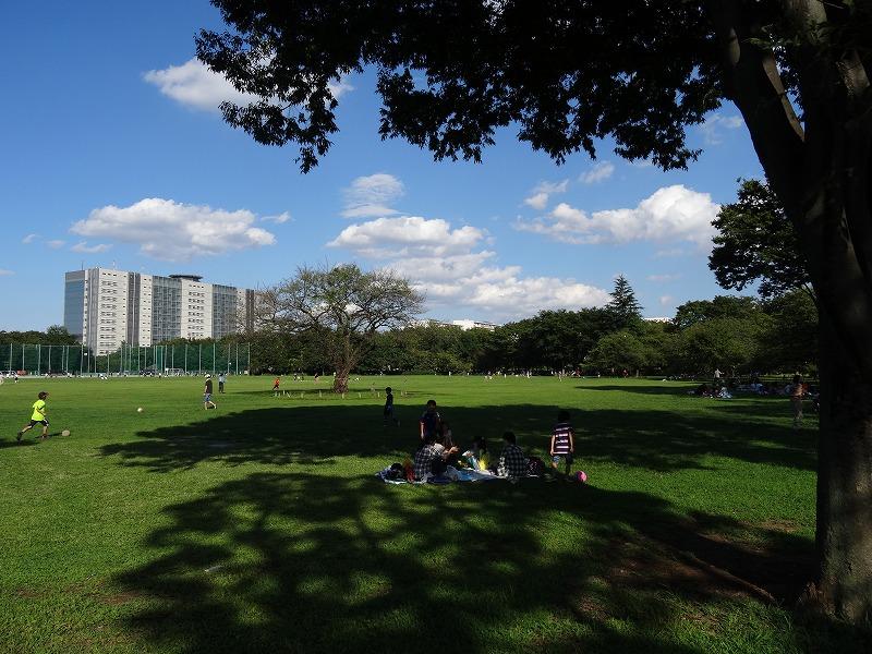 武蔵野中央公園 木陰で一休み