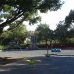 武蔵野中央公園 スプリング遊具