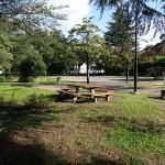 武蔵野中央公園 ベンチ