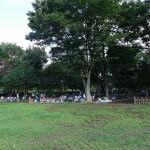武蔵野中央公園 広場から