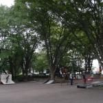 武蔵野公園 スケートコート
