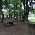 武蔵野公園 林の中でBBQ