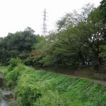 武蔵野公園 野川からのBBQ場
