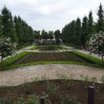 秋留台公園 バラ園 シーズンは5月と10月