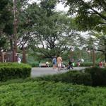秋留台公園 トリム広場の遊具場