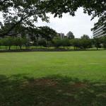 若葉台公園 円形広場