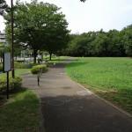 若葉台公園 芝生広場前歩道